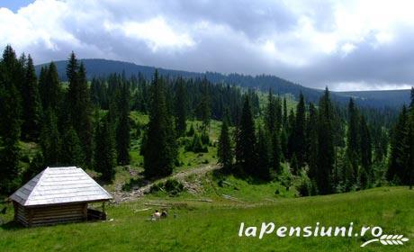 Pensiunea Magnolia - accommodation in  Maramures Country (Surrounding)
