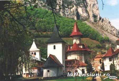 Pensiunea Ramet - accommodation in  Apuseni Mountains (Surrounding)