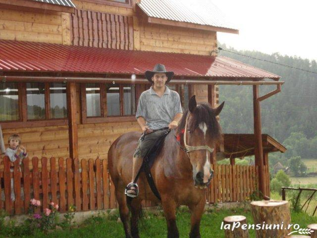 Cabana Cascada - accommodation in  Apuseni Mountains (06)