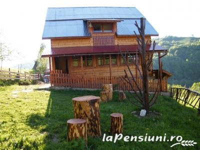 Cabana Cascada - accommodation in  Apuseni Mountains (11)