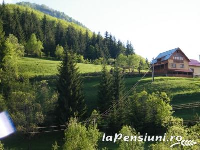 Cabana Cascada - accommodation in  Apuseni Mountains (12)