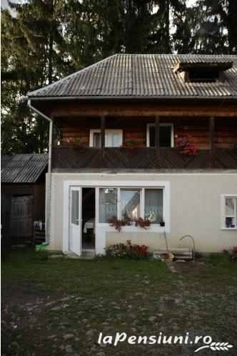 Pensiunea Lucia - accommodation in  Maramures Country (04)