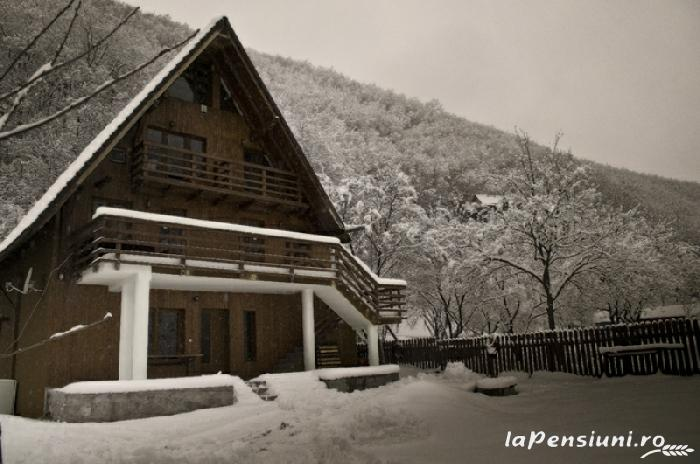 Vila Ramet - accommodation in  Apuseni Mountains (01)