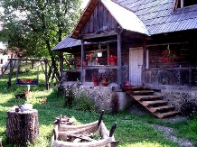 Pensiunea Rustic - accommodation in  Maramures Country (09)