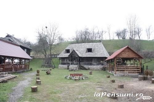 Pensiunea Rustic - accommodation in  Maramures Country (10)