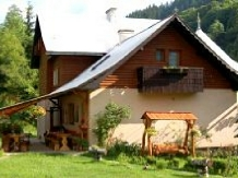 Rural accommodation at  Pensiunea Aurora