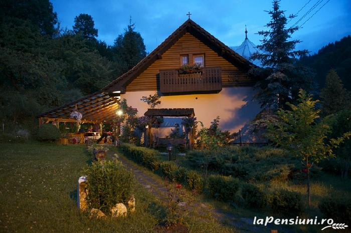 Pensiunea Aurora - accommodation in  Motilor Country, Arieseni (03)