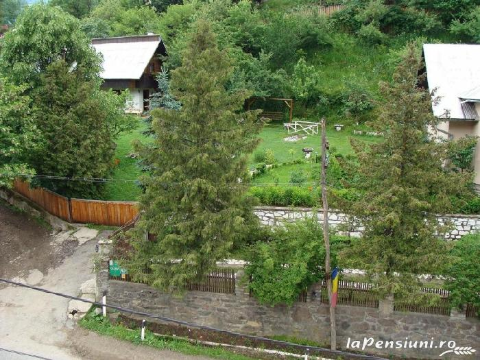 Pensiunea Aurora - accommodation in  Motilor Country, Arieseni (06)