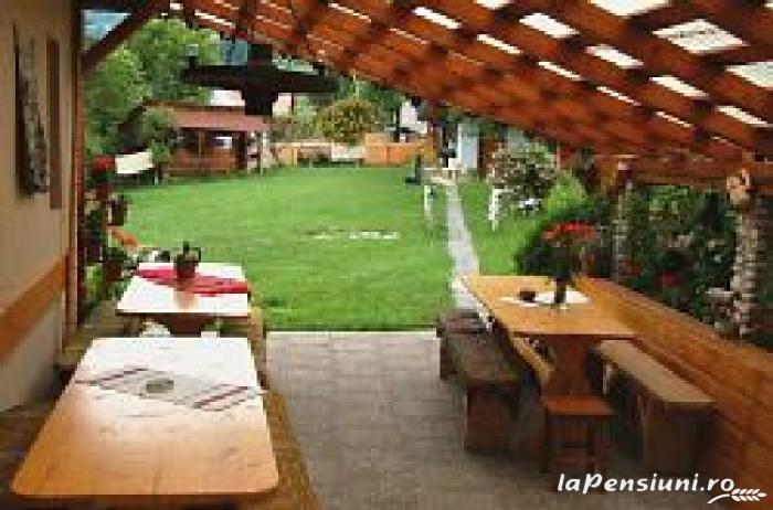 Pensiunea Aurora - accommodation in  Motilor Country, Arieseni (17)