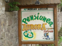Pensiunea Aurora - accommodation in  Motilor Country, Arieseni (21)