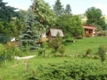 Pensiunea Aurora - accommodation in  Motilor Country, Arieseni (22)
