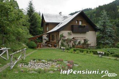 Pensiunea Aurora - accommodation in  Motilor Country, Arieseni (24)