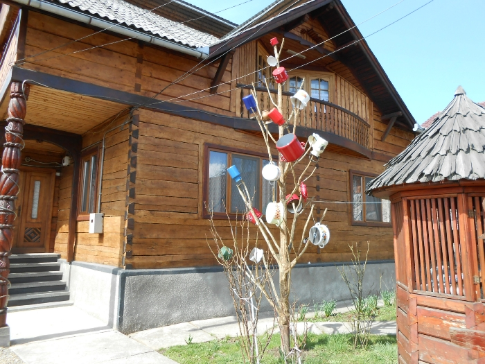 Pensiunea Teleptean - accommodation in  Maramures Country (01)