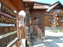 Pensiunea Teleptean - accommodation in  Maramures Country (02)