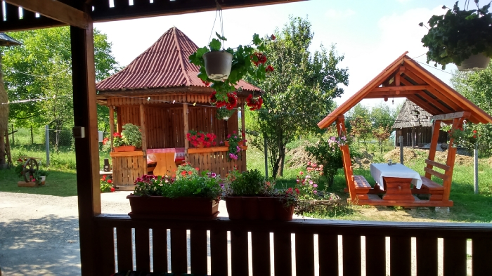 Pensiunea Teleptean - accommodation in  Maramures Country (03)