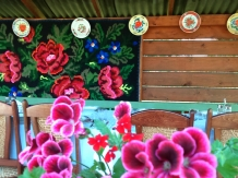 Pensiunea Teleptean - accommodation in  Maramures Country (05)