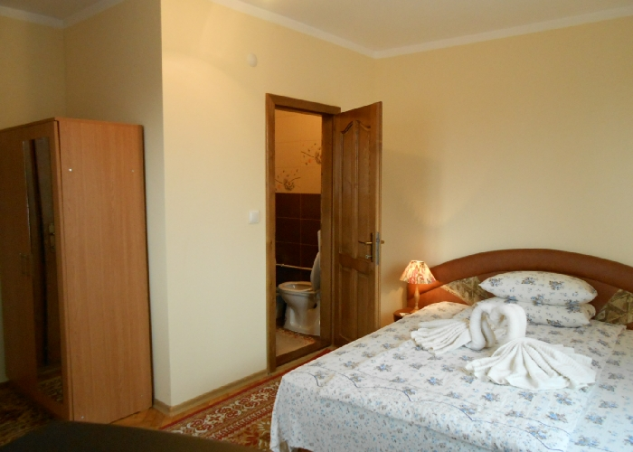 Pensiunea Teleptean - accommodation in  Maramures Country (10)