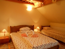 Pensiunea Teleptean - accommodation in  Maramures Country (11)