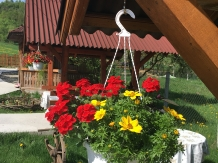 Pensiunea Teleptean - accommodation in  Maramures Country (32)