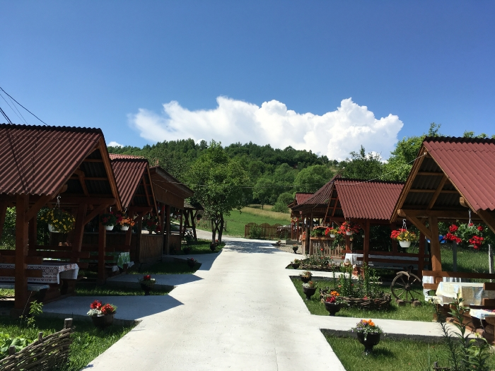 Pensiunea Teleptean - accommodation in  Maramures Country (37)
