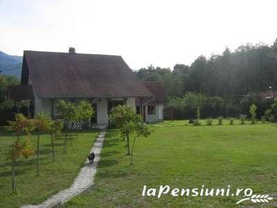 Pensiunea Mihaela - accommodation in  Fagaras and nearby (01)