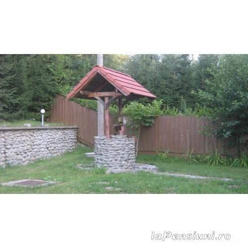 Pensiunea Mihaela - accommodation in  Fagaras and nearby (02)