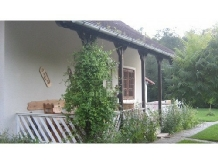 Pensiunea Mihaela - accommodation in  Fagaras and nearby (10)