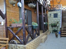 Pensiunea Delta Rustic - accommodation in  Danube Delta (10)