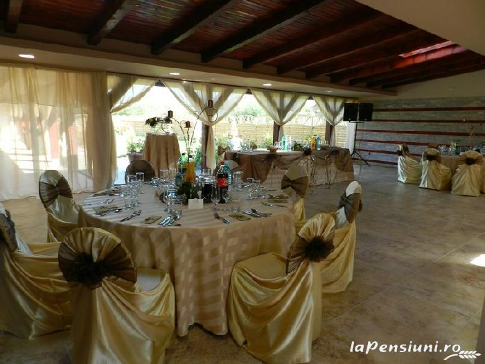 Pensiunea Anette - accommodation in  Banat (11)