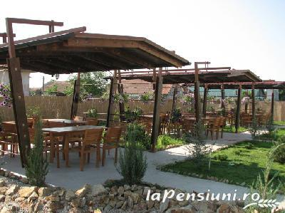 Pensiunea Anette - accommodation in  Banat (22)