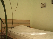 Pensiunea Cochet - accommodation in  Banat (12)