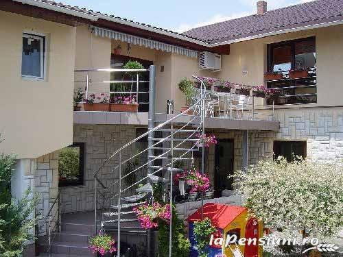Vila Sara - accommodation in  Banat (01)