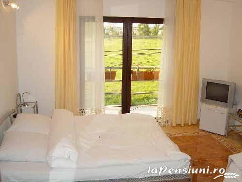 Vila Sara - accommodation in  Banat (12)