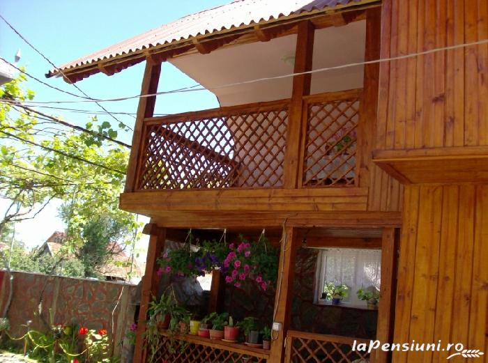 Casa Boierului Imbrii - accommodation in  Fagaras and nearby, Transfagarasan, Balea (01)