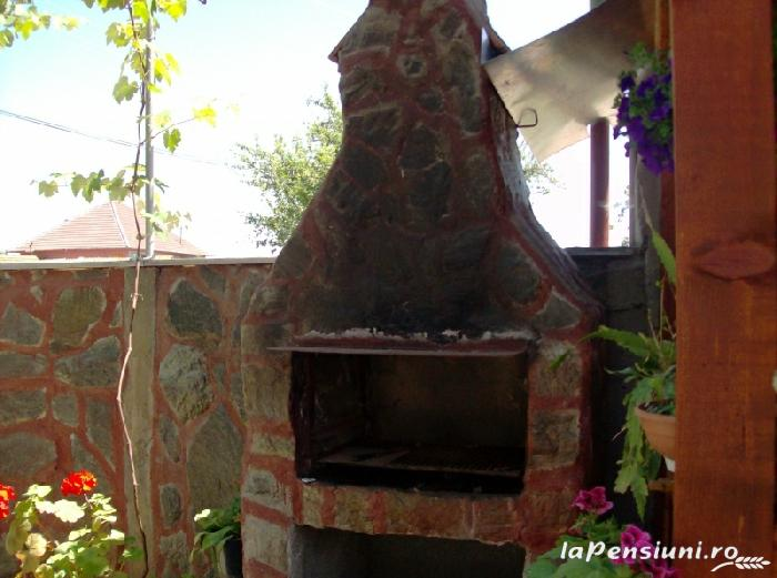 Casa Boierului Imbrii - accommodation in  Fagaras and nearby, Transfagarasan, Balea (02)