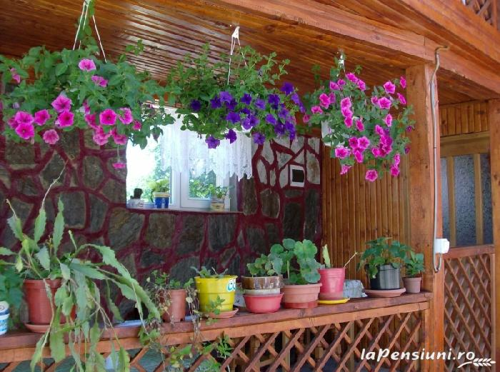 Casa Boierului Imbrii - accommodation in  Fagaras and nearby, Transfagarasan, Balea (04)