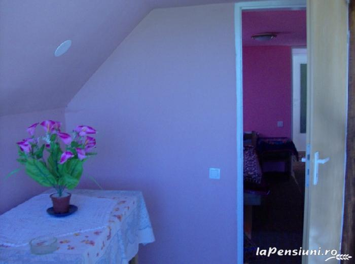 Casa Boierului Imbrii - accommodation in  Fagaras and nearby, Transfagarasan, Balea (09)
