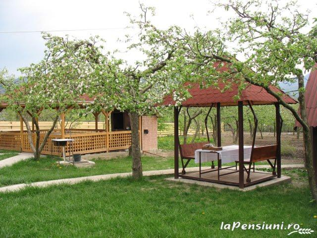 Pensiunea Magnolia - accommodation in  Ceahlau Bicaz (03)