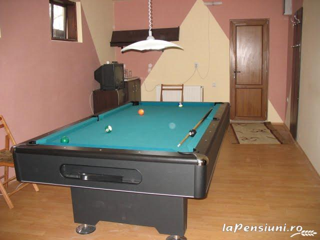 Pensiunea Magnolia - accommodation in  Ceahlau Bicaz (07)