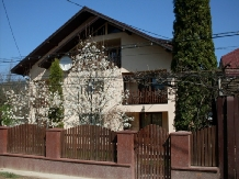 Pensiunea Magnolia - accommodation in  Ceahlau Bicaz (17)