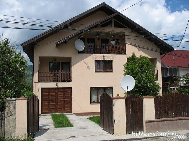 Pensiunea Magnolia - accommodation in  Ceahlau Bicaz (19)