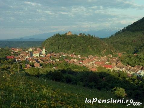 Pensiunea Ela - accommodation in  Sibiu Surroundings (Surrounding)