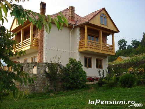 Pensiunea Estival - accommodation in  Ceahlau Bicaz (01)