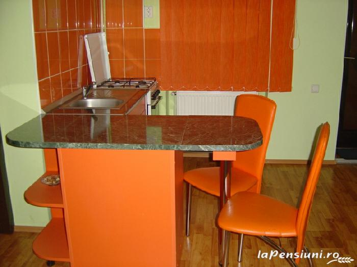 Pensiunea Boema - accommodation in  Transylvania (07)
