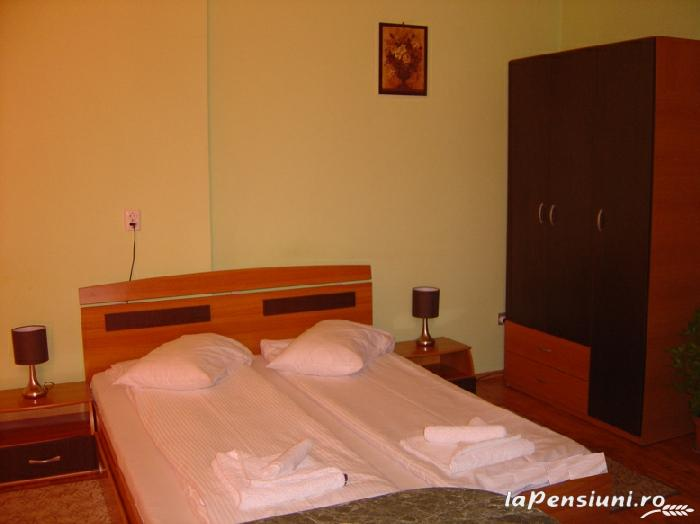 Pensiunea Boema - accommodation in  Transylvania (12)