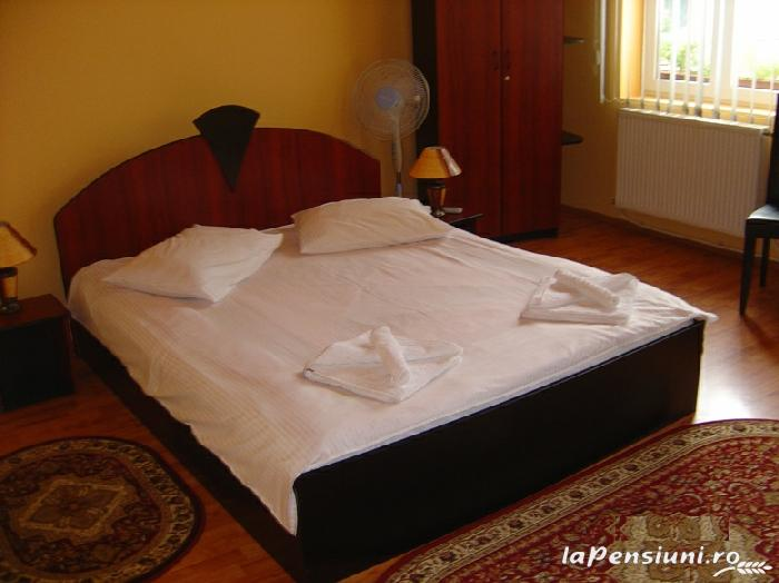 Pensiunea Boema - accommodation in  Transylvania (13)