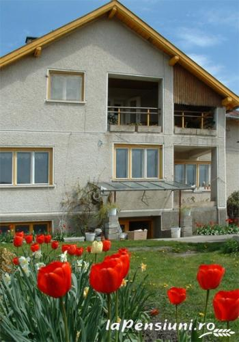 Casa Szakacs - accommodation in  Harghita Covasna (02)