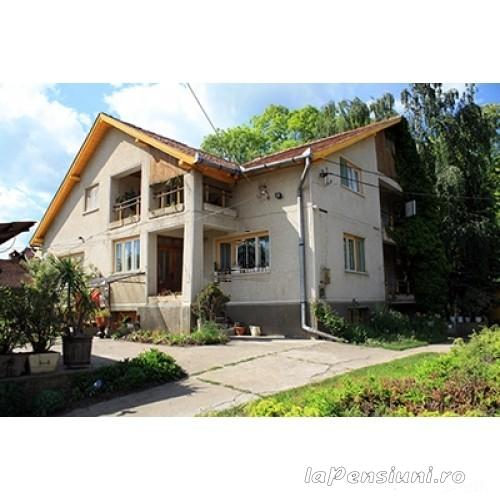Casa Szakacs - accommodation in  Harghita Covasna (06)