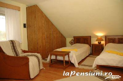 Casa Szakacs - accommodation in  Harghita Covasna (10)