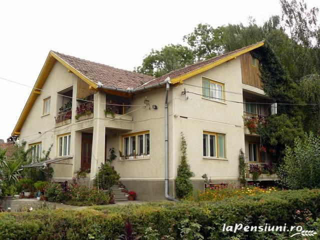Casa Szakacs - accommodation in  Harghita Covasna (12)